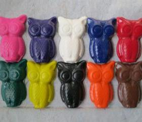 Large Owls Crayon Set of 14